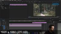 Adobe Premiere Pro для Motion-дизайнера: быстрый старт (2020/HD/Rus)