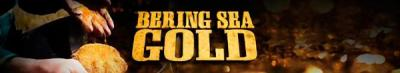 Bering Sea Gold S12E20 Up in Flames 1080p AMZN WEB-DL DDP2 0 H 264-NTb