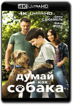 Думай как собака / Think Like a Dog (2020) WEB-DL 2160p | 4K | HDR | iTunes