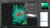 Photoshop: Основы цифровой графики (2020/PCRec/Rus)