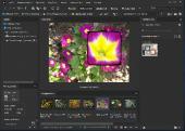Adobe Bridge 2021 11.0.0.83 Multilingual by m0nkrus