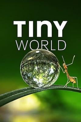 Крошечный мир / Tiny World [Сезон: 1] (2020) WEB-DL 1080p