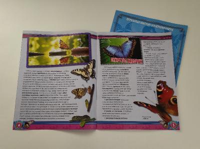 Удивительные Бабочки - График Выхода и обсуждение