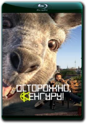Осторожно, Кенгуру! / Die Känguru-Chroniken (2020) BDRip 1080p | iTunes