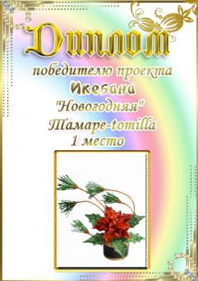 """Проект """"Икебана Новогодняя"""". Поздравляем победителей 31196095b9c2fdef26b7b5a4cf373f68"""