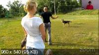 Агрессия и страхи собак - причины, методы коррекции и способы защиты (2020)