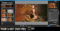 Exposure Software Photo Bundle Collection 01.2021