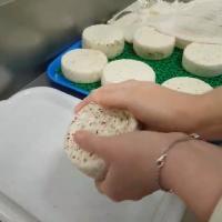 Новички: Курс по подготовке молока к сыроделию и обширная работа с заквасками (2020/CAMRip/Rus)