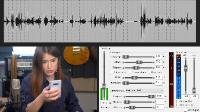 """Курс по аудио для видеоблогеров, подкастов и стримов """"Идеальный звук"""" (2020) HD"""
