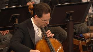 Новогодний концерт Венского филармонического оркестра / Neujahrskonzert der Wiener Philharmoniker (2021) Blu-Ray 1080i