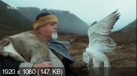 Дикий путь викингов / Wild Way of The Vikings (2018) HDTV 1080i