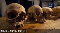 Забытая армия викингов / Lost Viking Army (2019) HDTV 1080i