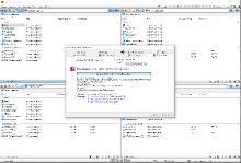 Q-Dir 9.51 (2021) PC