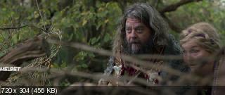 Отец четверых и викинги (2020)