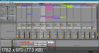 Ableton Live Suite 11.0.1