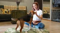 Прокачай IQ своей собаки (2021/HD/Rus)