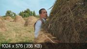 Жуки [S02 + Фильм о фильме] (2021) WEBRip-AVC от Files-х   4.94 GB