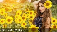 Wallpapers Mix №884