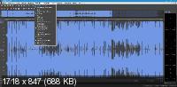 MAGIX Sound Forge Pro 15.0 Build 45 + Rus