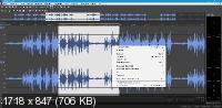 MAGIX SOUND FORGE Pro Suite 15.0 Build 45 + Rus