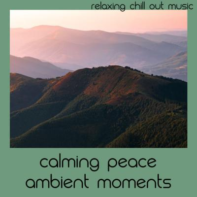 Relaxing Chill Out Music - Calming Peace Ambient Moments (2021)