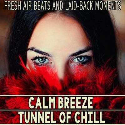 Various Artists - Calm Breeze - Tunnel of Chill (2021)