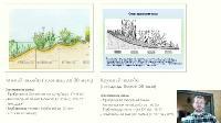 Как построить водоем на участке? (2021/PCRec/Rus)