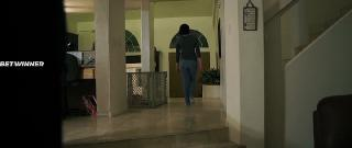 Незнакомец в ночи (2019)