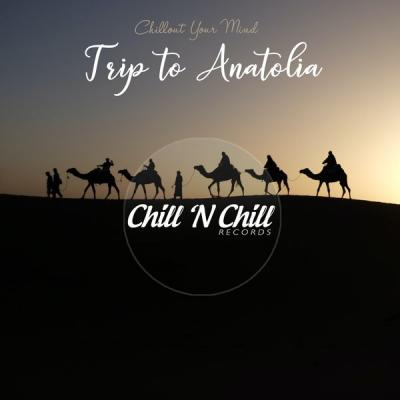 Various Artists - Trip to Anatolia Chillout Your Mind (2021)