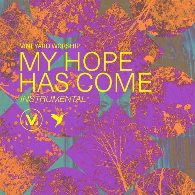 Vineyard Worship - My Hope Has Come [Instrumental] (2021)