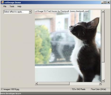 csXImage 5.0.9 Image Edit and Twain Control