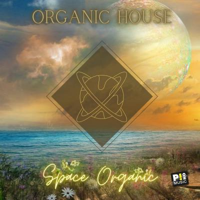 Various Artists - Organic House - Space Organic (2021)
