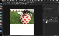 Основы Фотошопа для дизайнера от А до Я (2021) Видеокурс