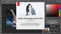 Adobe Photoshop 2020 v21.2.12.215 [x64] (2020) PC