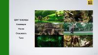 Теория и технология цветокоррекции видео (2021/PCRec/Rus)