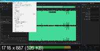 Adobe Audition 2020 13.0.13.46 Rus/Eng Portable by conservator
