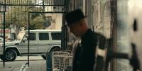 Берег москитов (1 сезон: 1-7 серии из 7) / The Mosquito Coast / 2021 / ПМ (AlexFilm) / WEB-DLRip + WEB-DL (720p, 1080p)