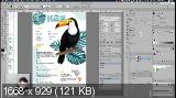 Adobe Illustrator. Продвинутый уровень. Гибридный курc (2020)